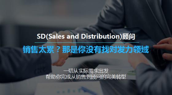 SAP-SD顾问职业课程